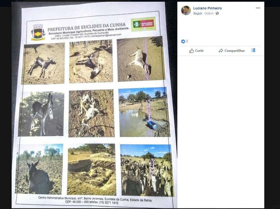 Prefeito compartilhou fotos do laudo no Facebook — Foto: Reprodução/Facebook