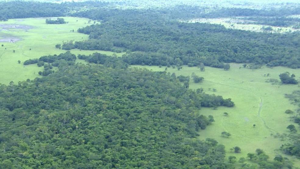 Imagem aérea da Renca no território dentro do Amapá (Foto: Rede Amazônica/Reprodução)