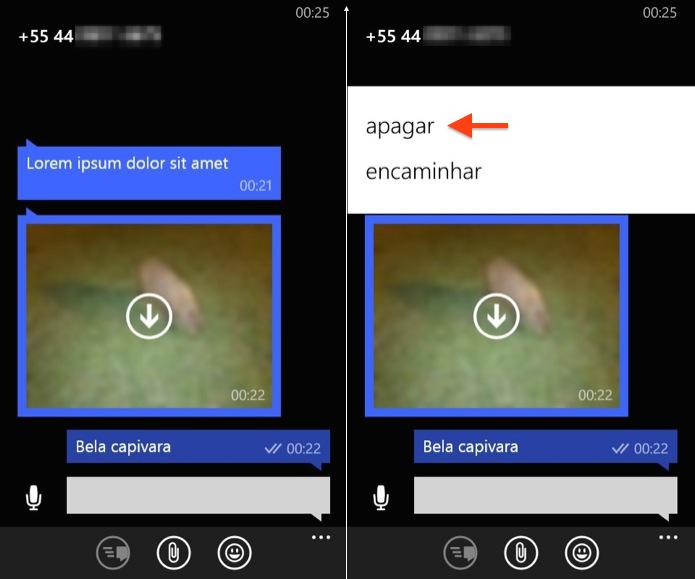 Excluindo mensagem no WhatsApp para Windows Phone (Foto: Reprodução/Helito Bijora)