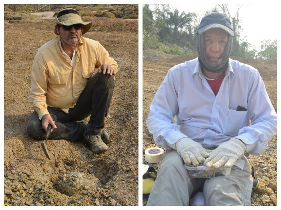 Escavações e buscas continuam após pesquisadores acharem fóssil de ave — Foto: Vanessa Gama/Arquivo pessoal