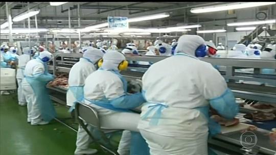 Recall do frango: relembre problemas com produção de carnes no Brasil