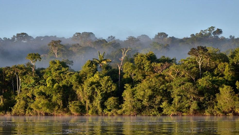 Alta Floresta, em MT — Foto: Rudimar Cipriani / Divulgação