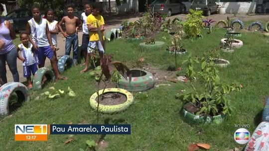 Moradores se unem para para livrar do lixo o local onde residem em Paulista