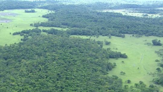 Foto: (Reprodução/Rede Amazônica)