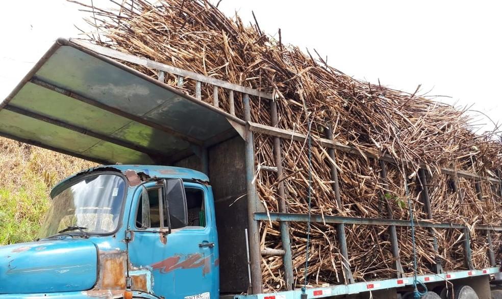 Dez caminhões que transportam cana-de-açúcar foram autuados em Ribeirão, na Zona da Mata de Pernambuco — Foto: Polícia Rodoviária Federal/Divulgação