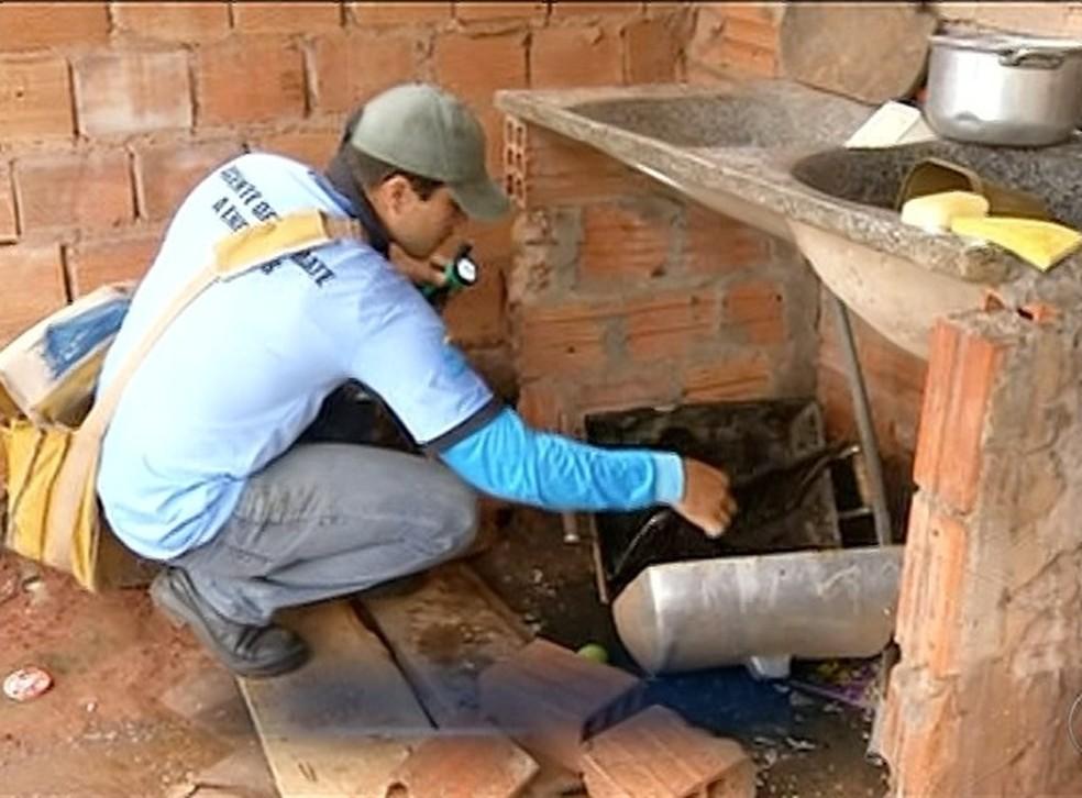 Casos de dengue preocupam moradores em Araguaína  (Foto: Reprodução/TV Anhanguera)