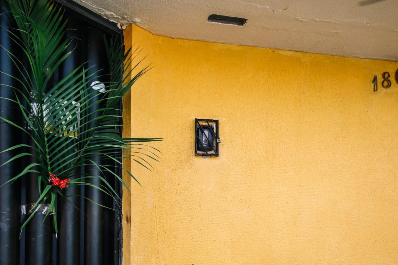 Sem missas presenciais, fiéis usam ramos na porta de casa em Fortaleza; fotos