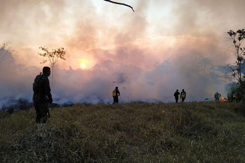 Focos de incêndio atingem região sudeste do Pará - Notícias - Plantão Diário