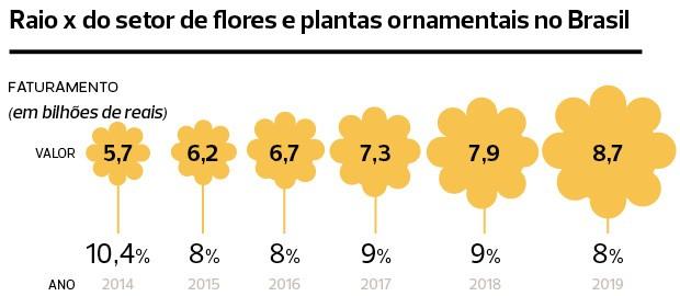 Com a queda drástica e imprevista nas vendas de flores, produtores acumulam prejuízos milionários, demitem – e até mudam de ramo (Foto: Divulgação)
