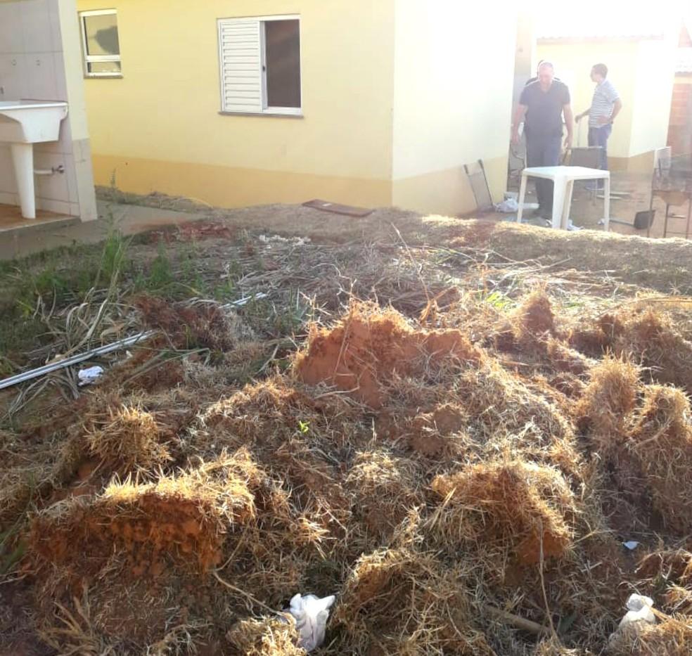Segundo a polícia, suspeitos escondiam as drogas em um monte de terra e grama seca no quintal de um vizinho (Foto: Polícia Civil/Divulgação)