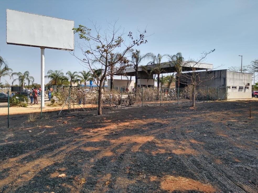 Segundo testemunhas, chamas teriam começado às margens da BR-497 — Foto: Defesa Civil/Divulgação