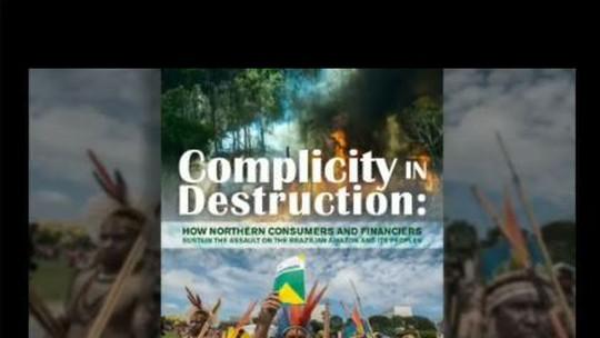 Políticos brasileiros ligados à bancada ruralista são acusados de destruir florestas
