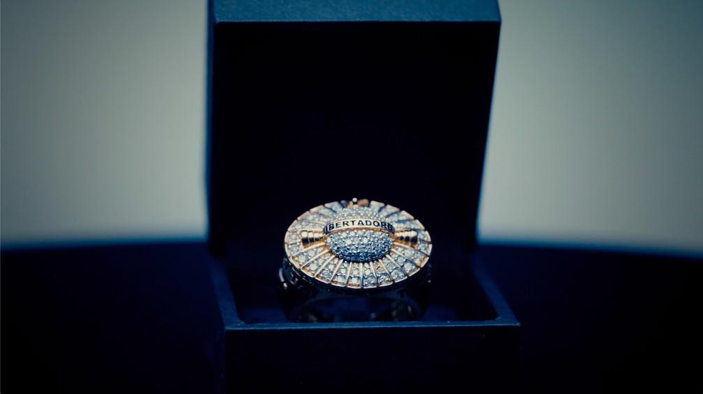 Joia tem 30 gramas de ouro, 131 diamantes, uma safira amarela e uma esmeralda — Foto: Divulgação