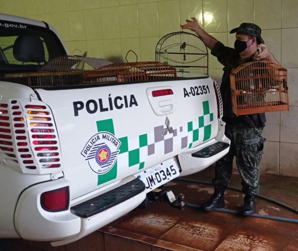 Morador do Jardim Planalto levou multa de R$ 4,5 mil em Presidente Prudente — Foto: Polícia Militar Ambiental