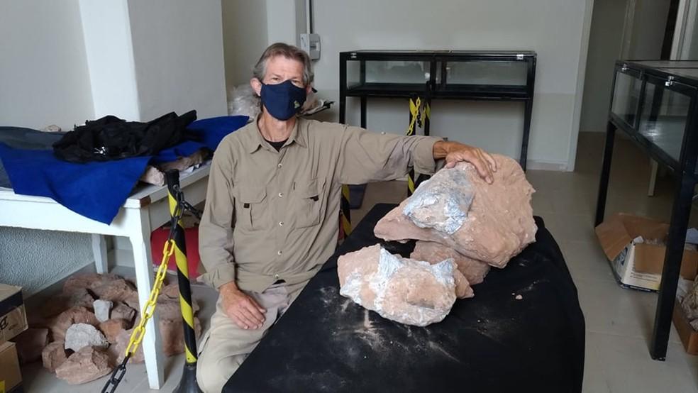 Paleontólogo William Nava junto aos fósseis entregues ao Museu de Paleontologia de Marília  — Foto: Museu de Paleontologia de Marília/Divulgação