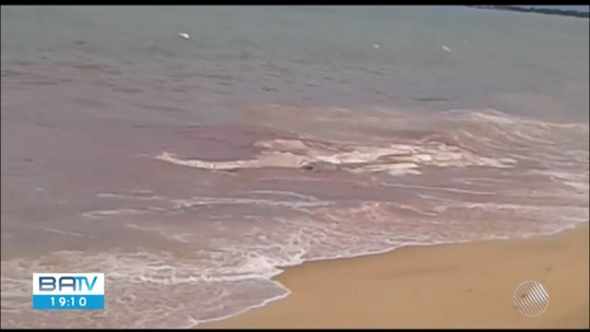 Praia dos Lençóis é interditada após aparecimento de restos mortais de uma baleia