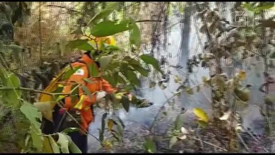 Incêndio subterrâneo atinge parque no Guará, no DF, há dois dias; veja vídeo
