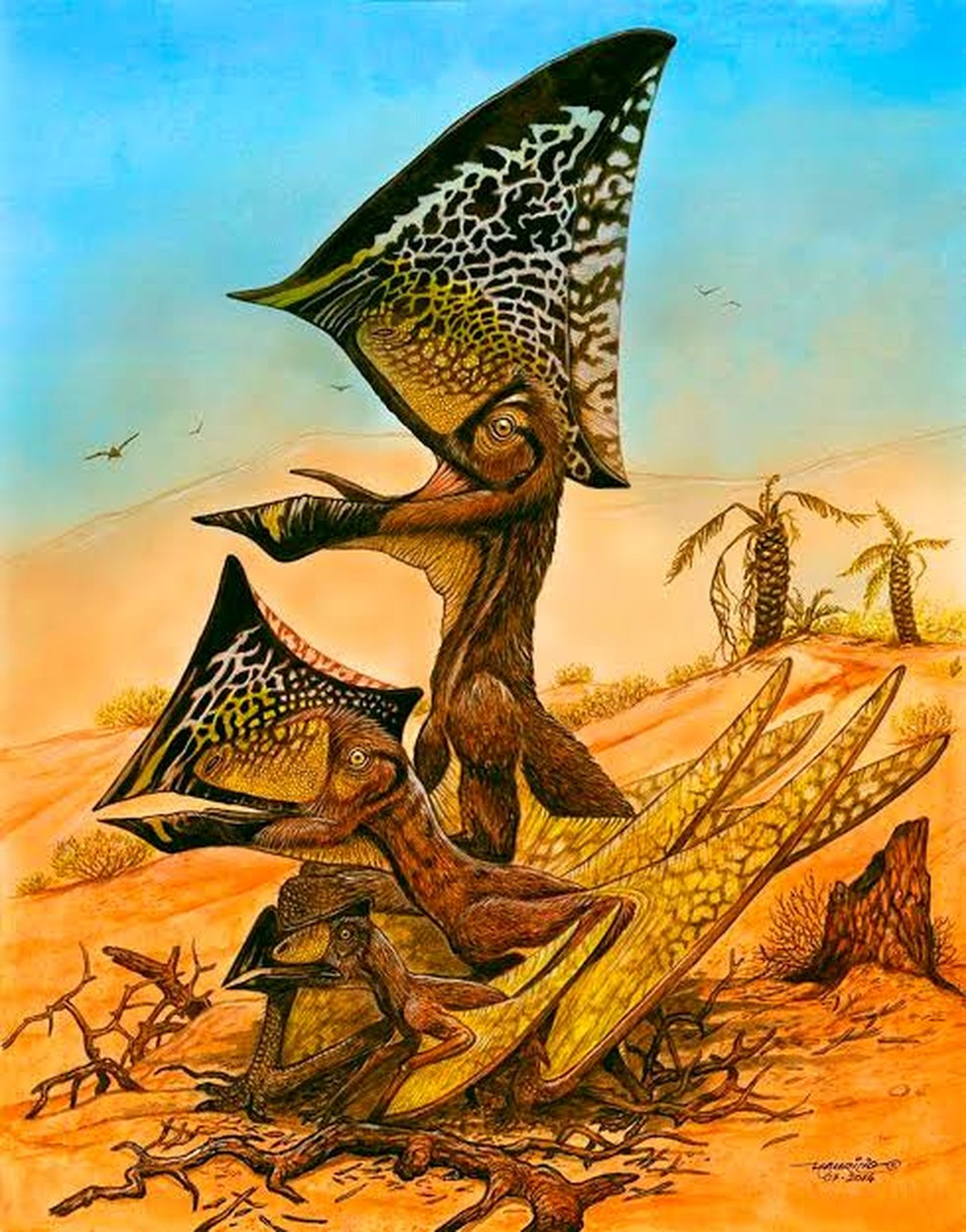 Caiuajara dobruskii viveu há cerca de 80 milhões de anos, no período Cenomaniano. — Foto: Maurilio Oliveira/Museu Nacional-UFRJ