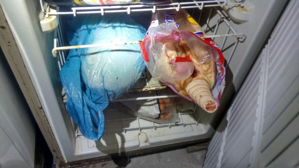 Tatus caçados ilegalmente foram encontrados em Iguape, SP (Foto: Divulgação/Polícia Militar Ambiental)