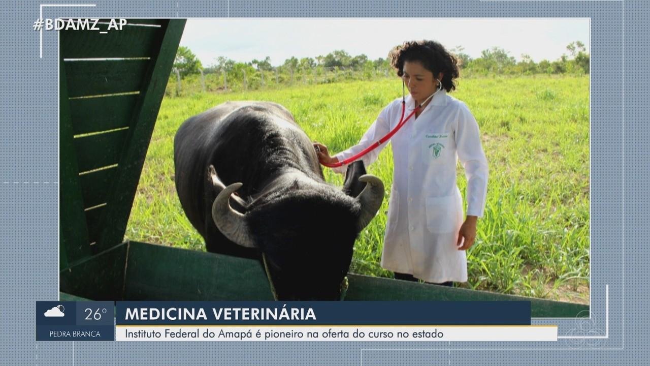 Instituto Federal do Amapá é pioneiro na oferta do curso de medicina veterinária no estado