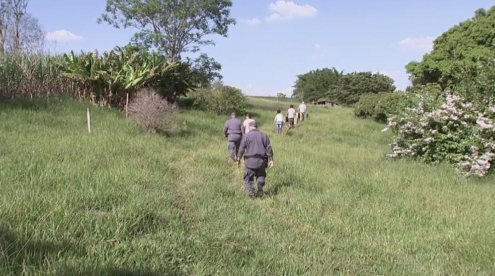 Projeto 'Gaiola Solta' é feito em parceria com a PM Ambiental (Foto: Reprodução/ TV TEM)