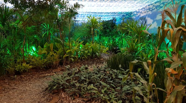 Entrada do Fórum Sebrae de Inovação: semelhanças entre ecossistemas (Foto: Hans Hackspacher)