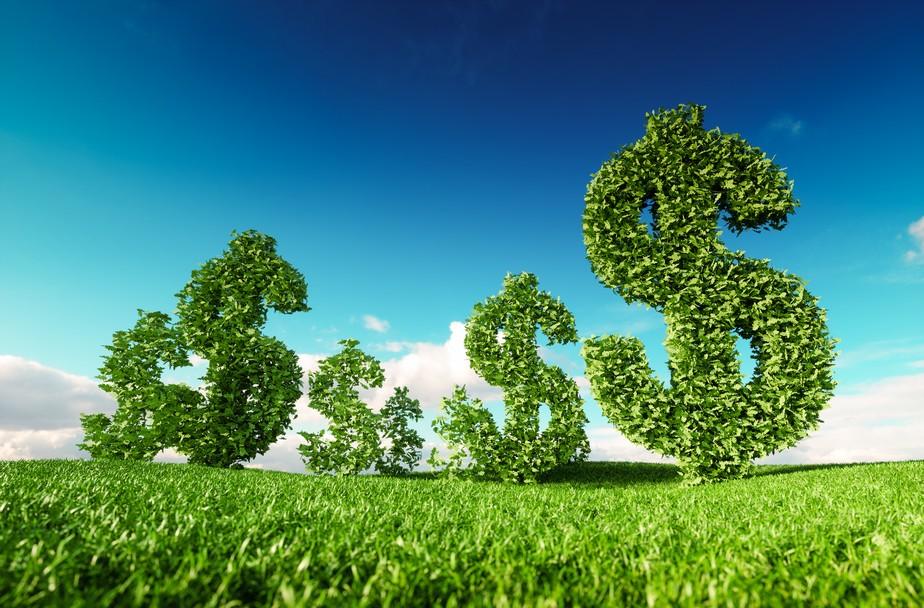 Mercado de capitais começa a valorizar economia limpa