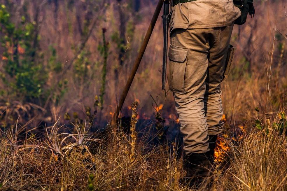 Período restritivo das queimadas começa nesta segunda-feira (15) — Foto: Governo de Mato Grosso