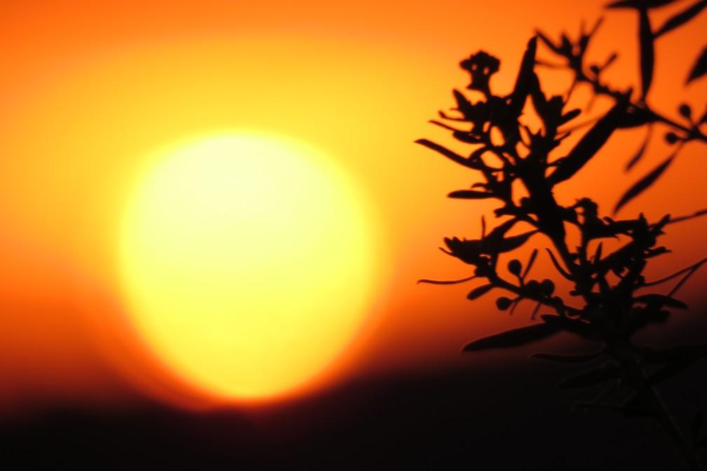 Fotos do pôr do sol também são destacadas pela fotógrafa de natureza (Foto: Maria Izabel Mosini/VC no TG)