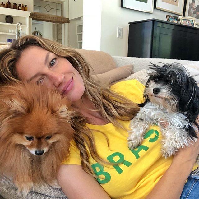 """Gisele Bündchen posa com os pets durante jogo do Brasil: """"Torcida organizada!"""" (Foto: Reprodução/Instagram)"""