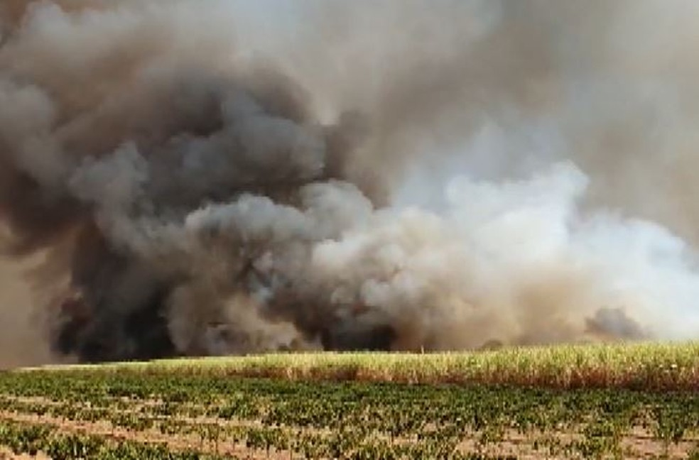 Incêndio atingiu canavial em Jeriquara, SP — Foto: Marcio Cataldo
