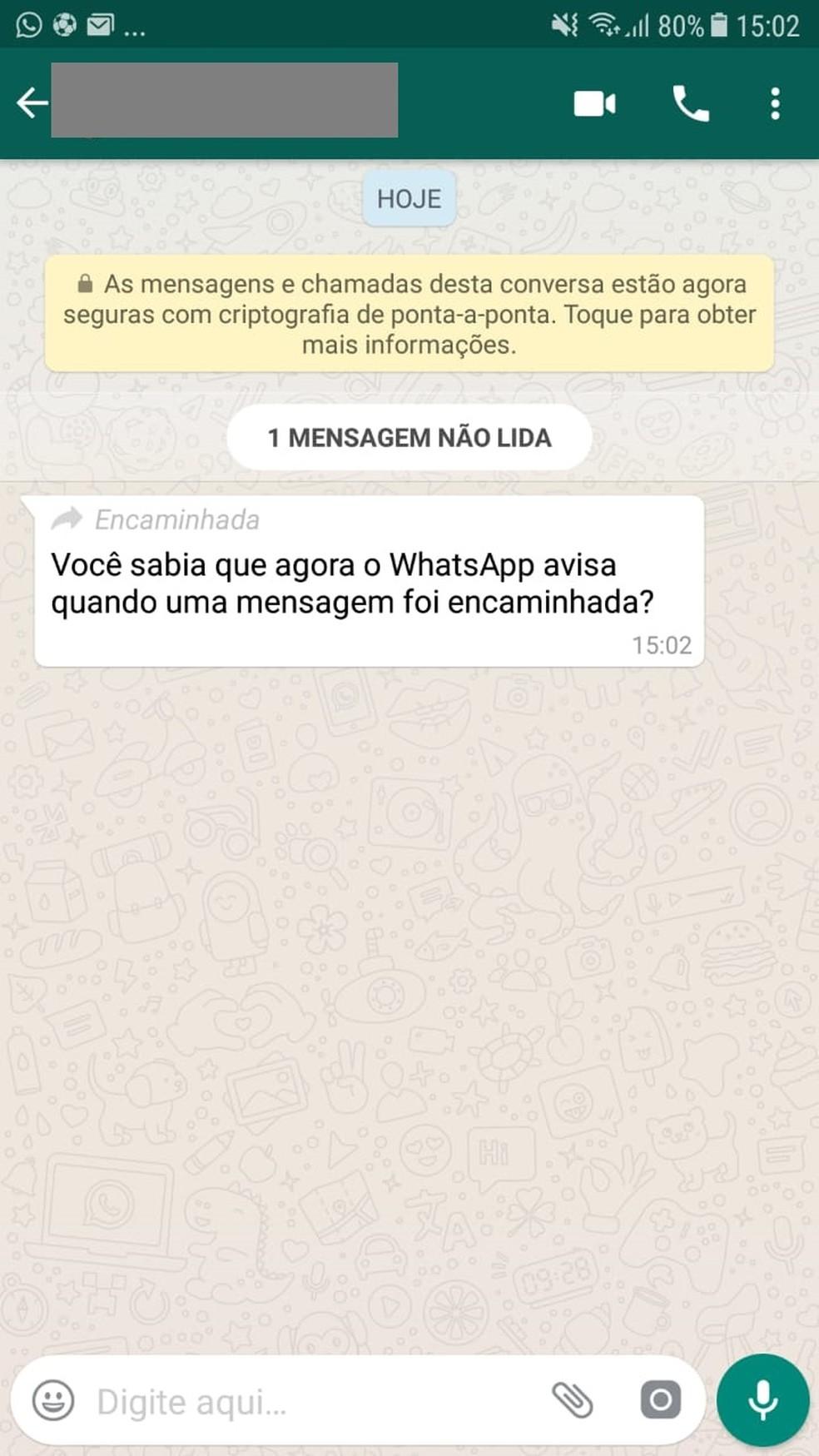 Whatsapp passa a avisar o usuário se a mensagem recebida foi encaminhada de outra conversa (Foto: Reprodução)