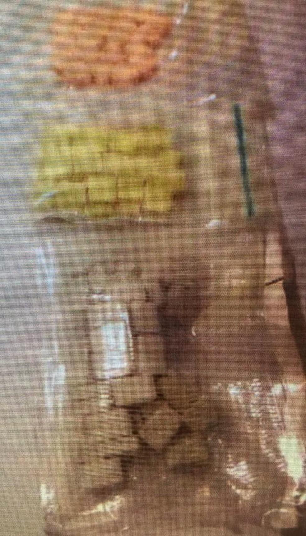Organização atua no tráfico internacinal de drogas sintéticas — Foto: Polícia Federal/Divulgação