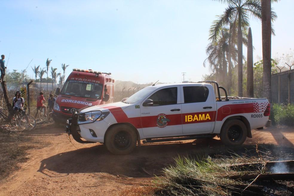 Corpo de Bombeiros e Ibama foram chamados para apagar o fogo (Foto: Pedro Bentes/ G1)