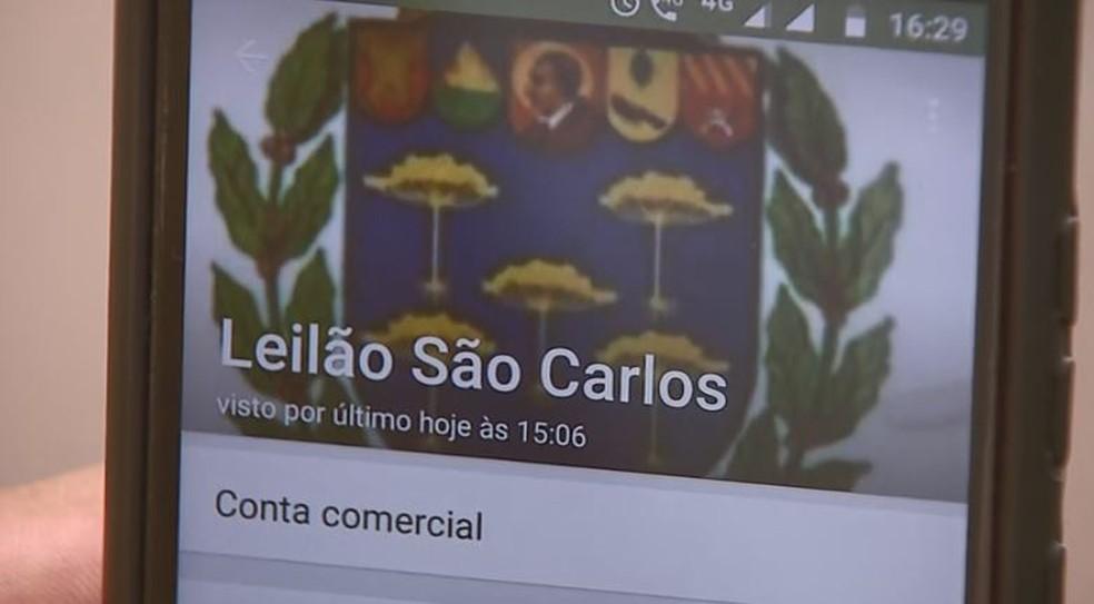 No perfil do aplicativo de mensagens o golpista usa o brasão da Prefeitura de São Carlos.  — Foto: Reprodução/EPTV