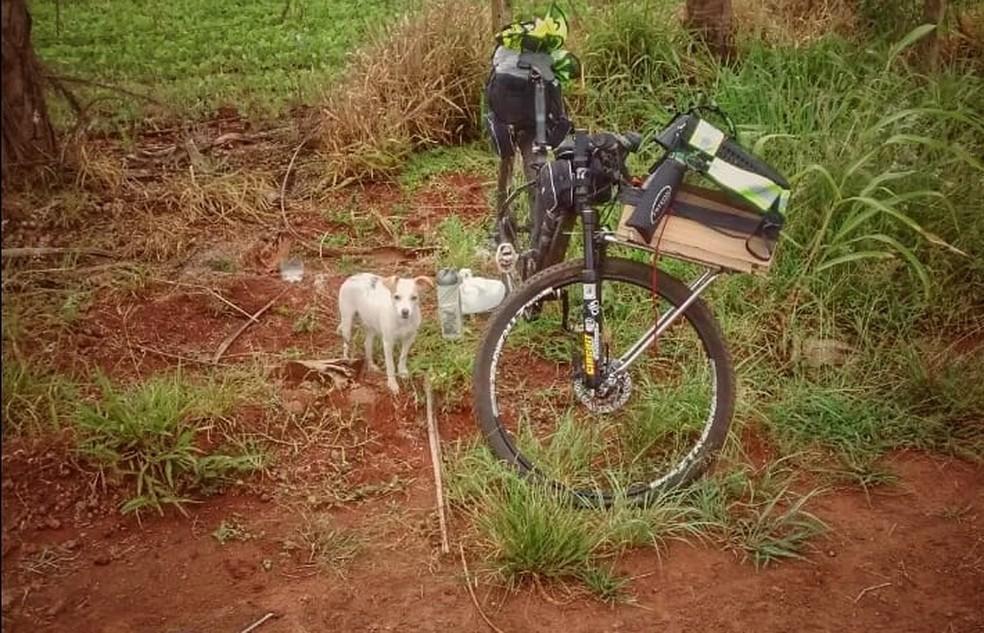 Ciclista parava a cada 30km para a cachorrinha esticar as patas. — Foto: Arquivo pessoal