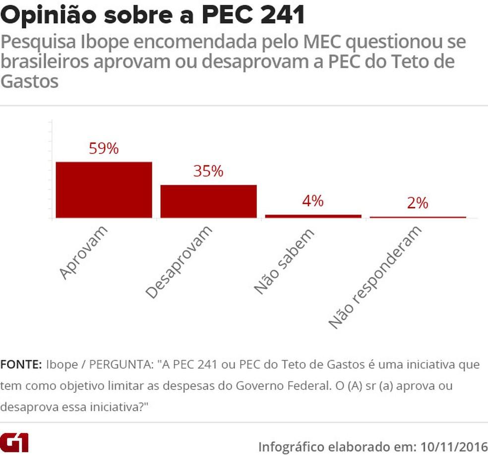 Gráfico mostra aprovação dos brasileiros sobre a PEC 241 (Foto: )