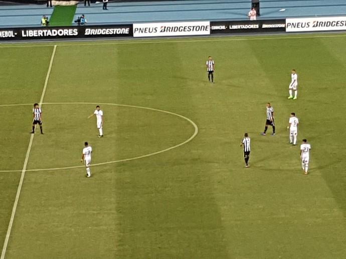 Formação Botafogo (Foto: Marcelo Baltar)