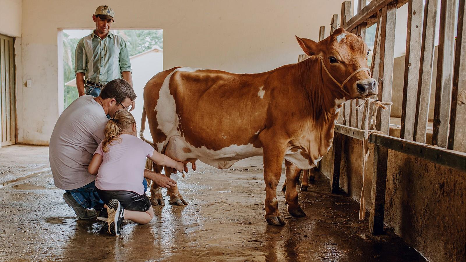 Agentes de turismo rural serão qualificados de graça em Uberlândia