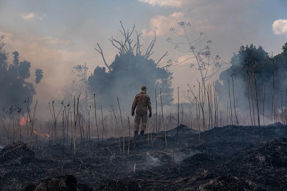 Governo de Mato Grosso decretou situação de emergência devido à estiagem e queimadas — Foto: Mayke Toscano/Secom-MT