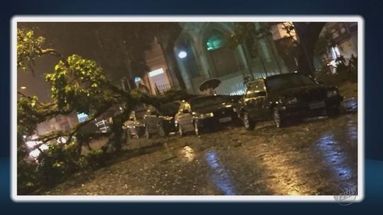 Chuva derruba árvores e muros e deixa estragos em cidades do Sul de MG