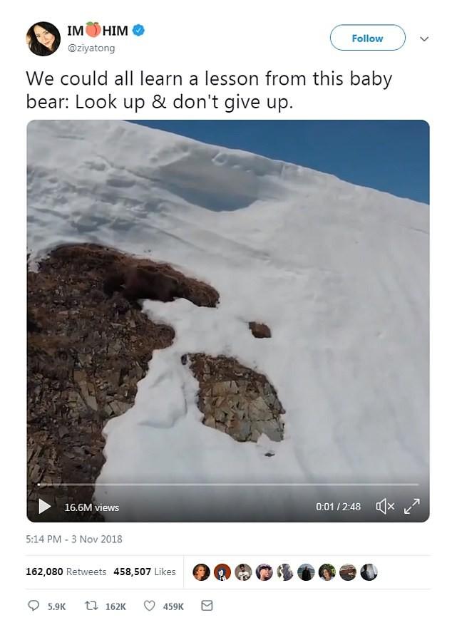 Vídeo teve mais de 17 milhões de views no Twitter (Foto: Reprodução)