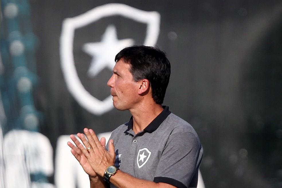 zé ricardo botafogo americano — Foto: Vitor Silva/SSPress/Botafogo
