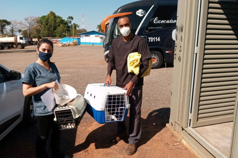 Alguns moradores da região já levaram seus pets para castração no primeiro dia da campanha — Foto: Entrevias/Divulgação