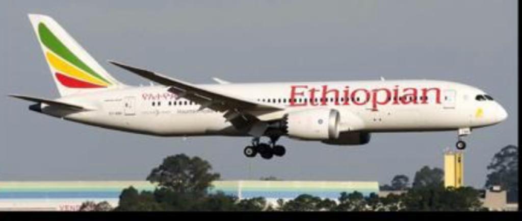 Coronavírus: 263 brasileiros desembarcam no aeroporto de Confins, na Grande BH