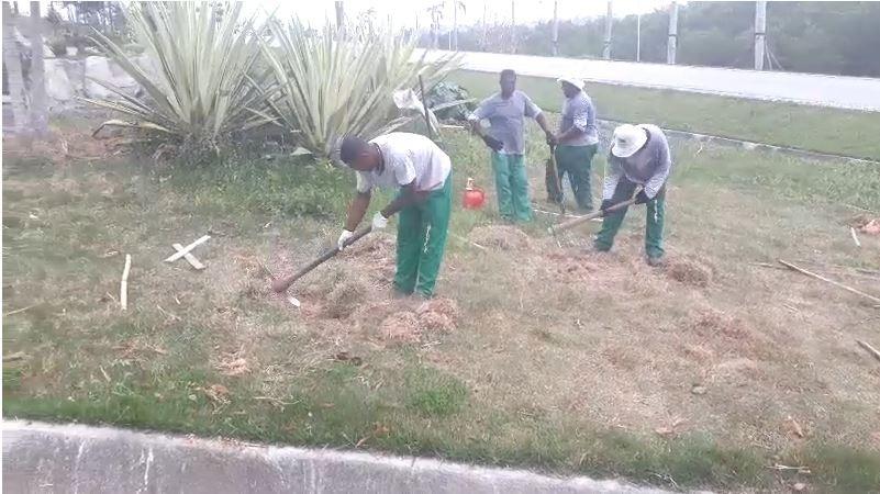 Prefeitura começa a preparar Parque Radical de Deodoro para receber mudas da Olimpíada - Notícias - Plantão Diário