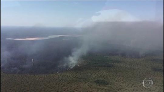 Tempo seco e calor propagam focos de incêndio na região central do país
