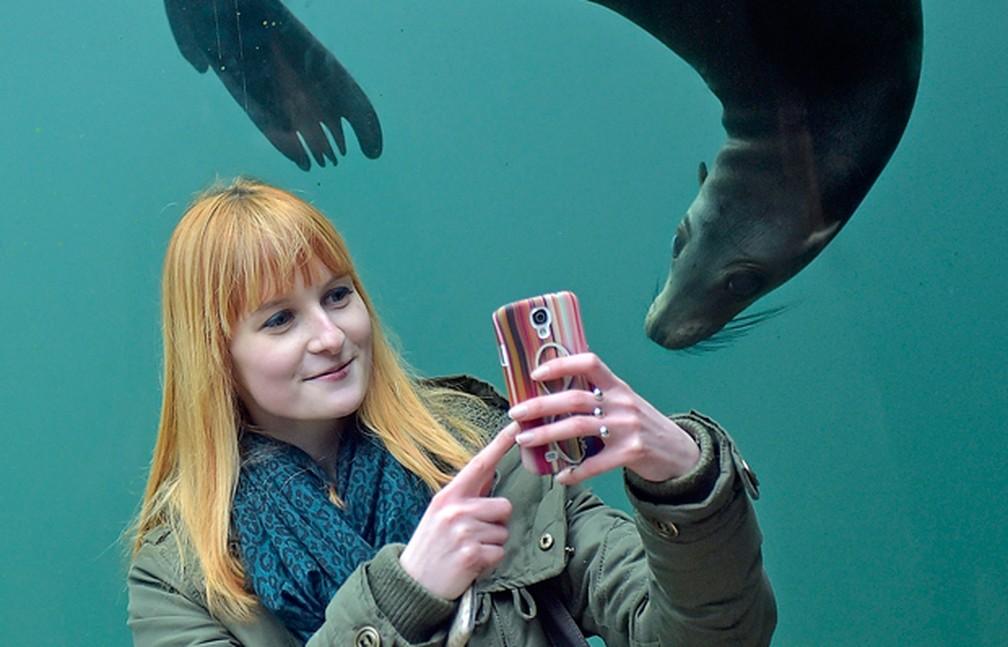 Turista tira selfie com foca em zoológico na Alemanha — Foto: Martin Meissner/AP