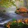 Papel de Parede: Autumn Landscape