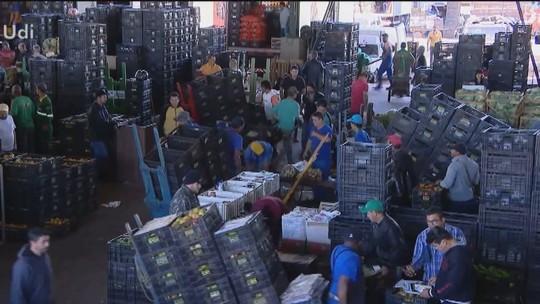 Efeitos da frente fria nas lavouras chegam ao mercado em Uberlândia